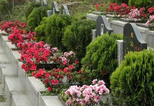 陵园与墓地存在哪些异同之处你了解嘛